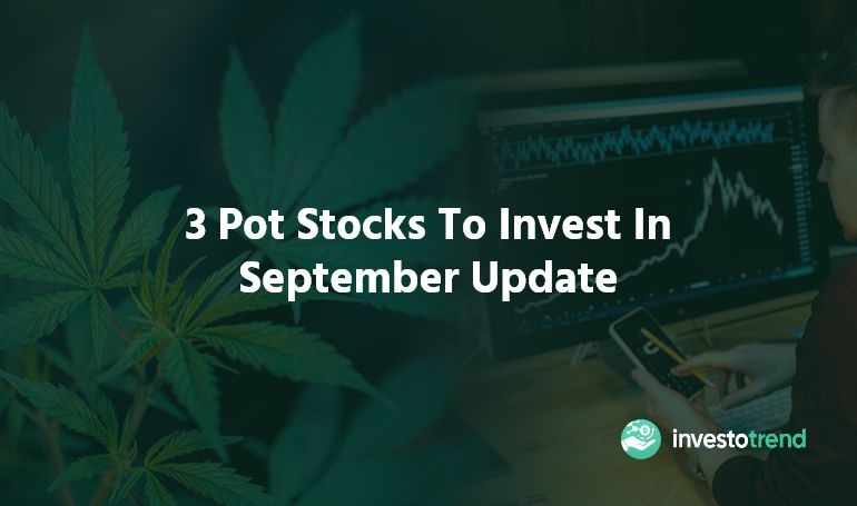 pot stocks to invest in september 2019