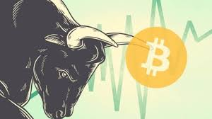 Cryptocurrency Bull Run