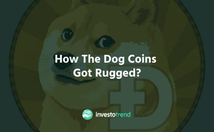 How The Dog Coins Got Rugged